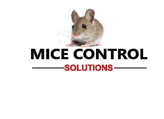 Mice Logo